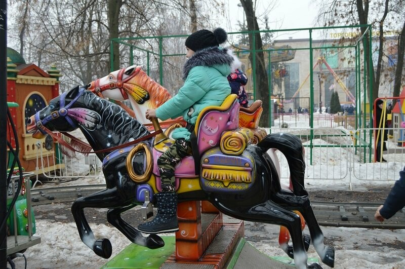 Тысячи тамбовчан отметили широкую Масленицу в Парке культуры, фото-12
