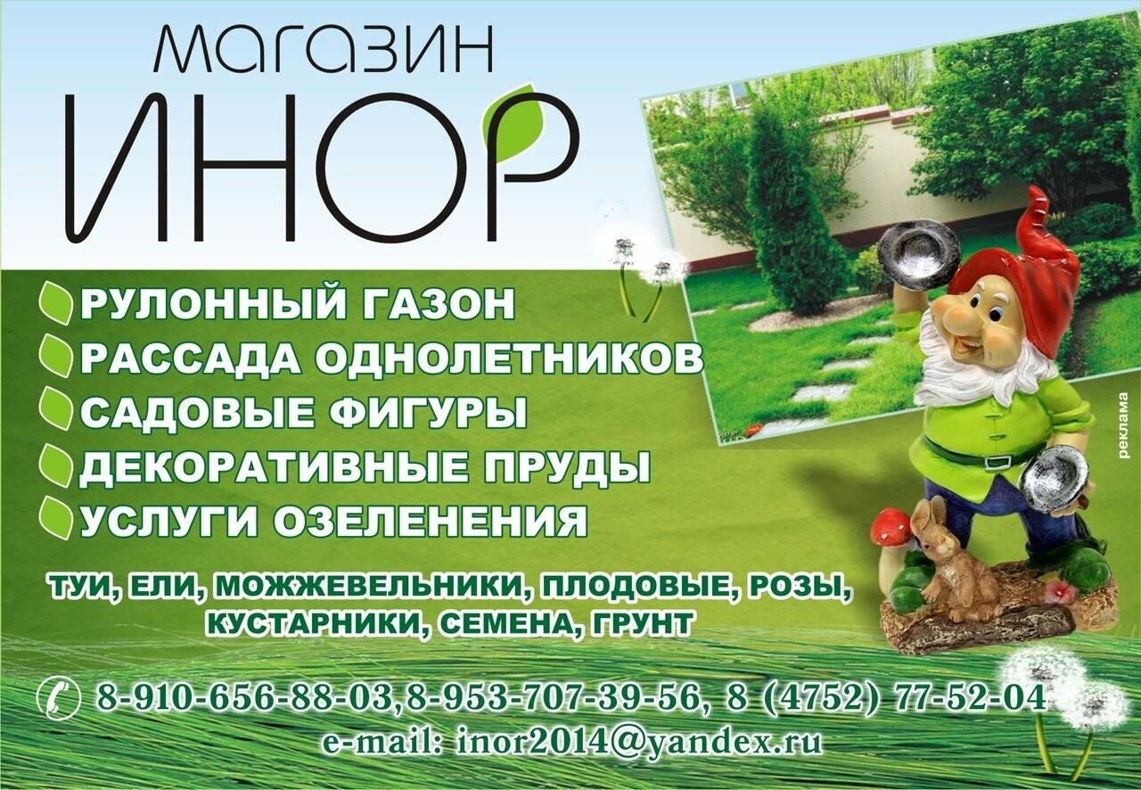 Специальный проект «Сад.Огород.Цветы» от городского портала Go68.ru, фото-1