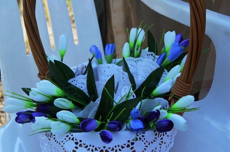Фотообзор: праздник первоцвета в Знаменке, фото-14