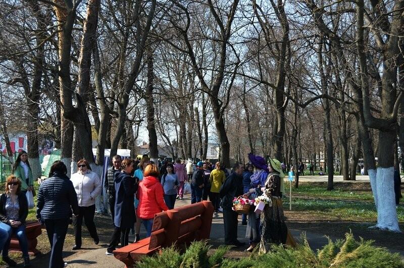 Фотообзор: праздник первоцвета в Знаменке, фото-12