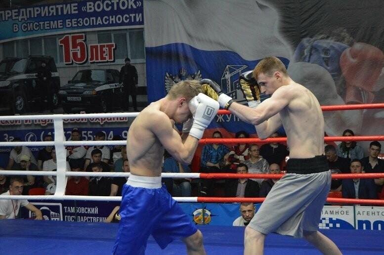 Тамбовский боксер Пеле Садоян – интернациональный чемпион по версии ProBoxing, фото-13
