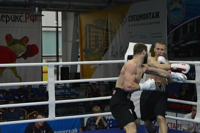 Тамбовский боксер Пеле Садоян – интернациональный чемпион по версии ProBoxing, фото-14