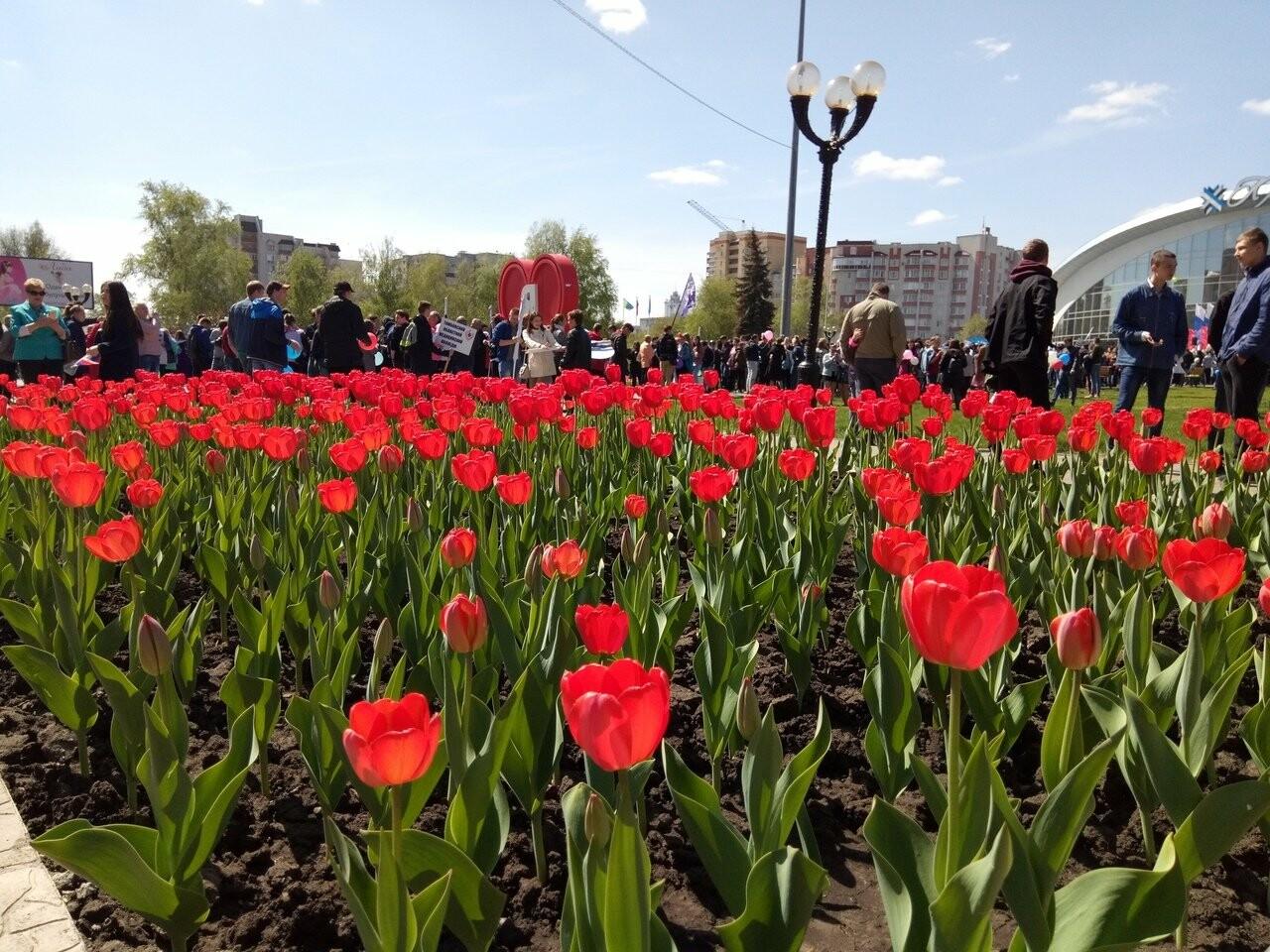 В Тамбове на первомайскую демонстрацию вышли более 22 тысяч человек, фото-8