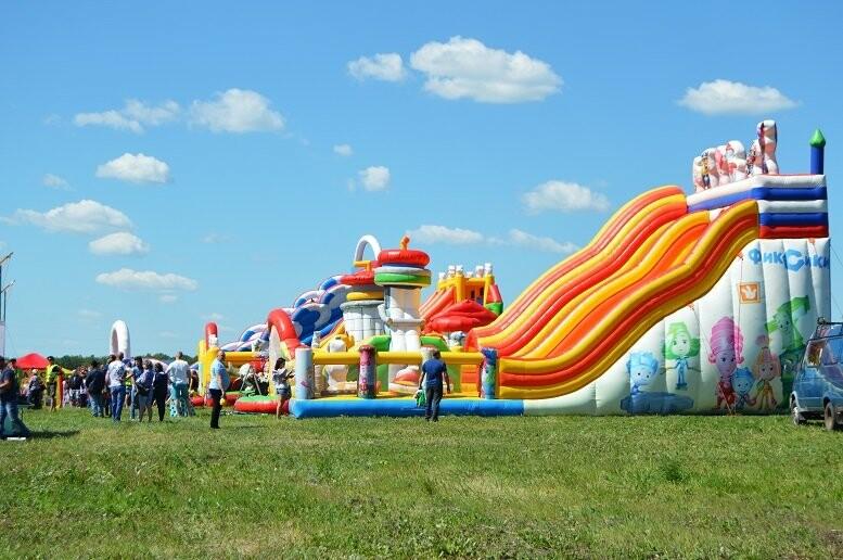 Тысячи тамбовчан посетили аэрофестиваль в Мичуринске, фото-13