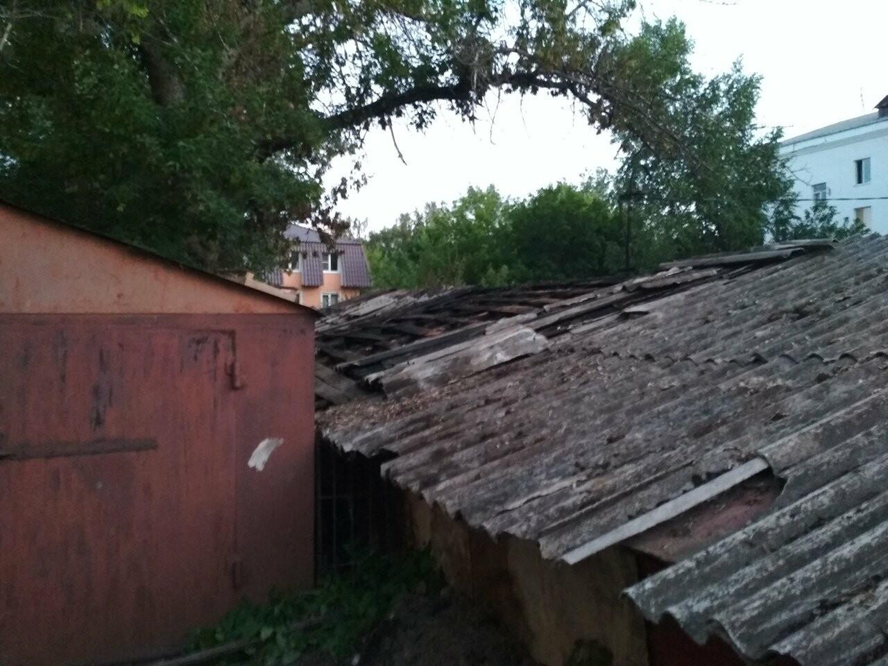 В Тамбове сгорели 16 сараев из-за сжигания тополиного пуха. ВИДЕО, фото-1