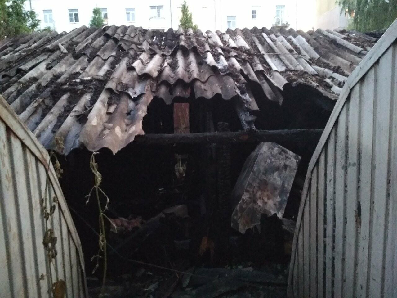 В Тамбове сгорели 16 сараев из-за сжигания тополиного пуха. ВИДЕО, фото-3