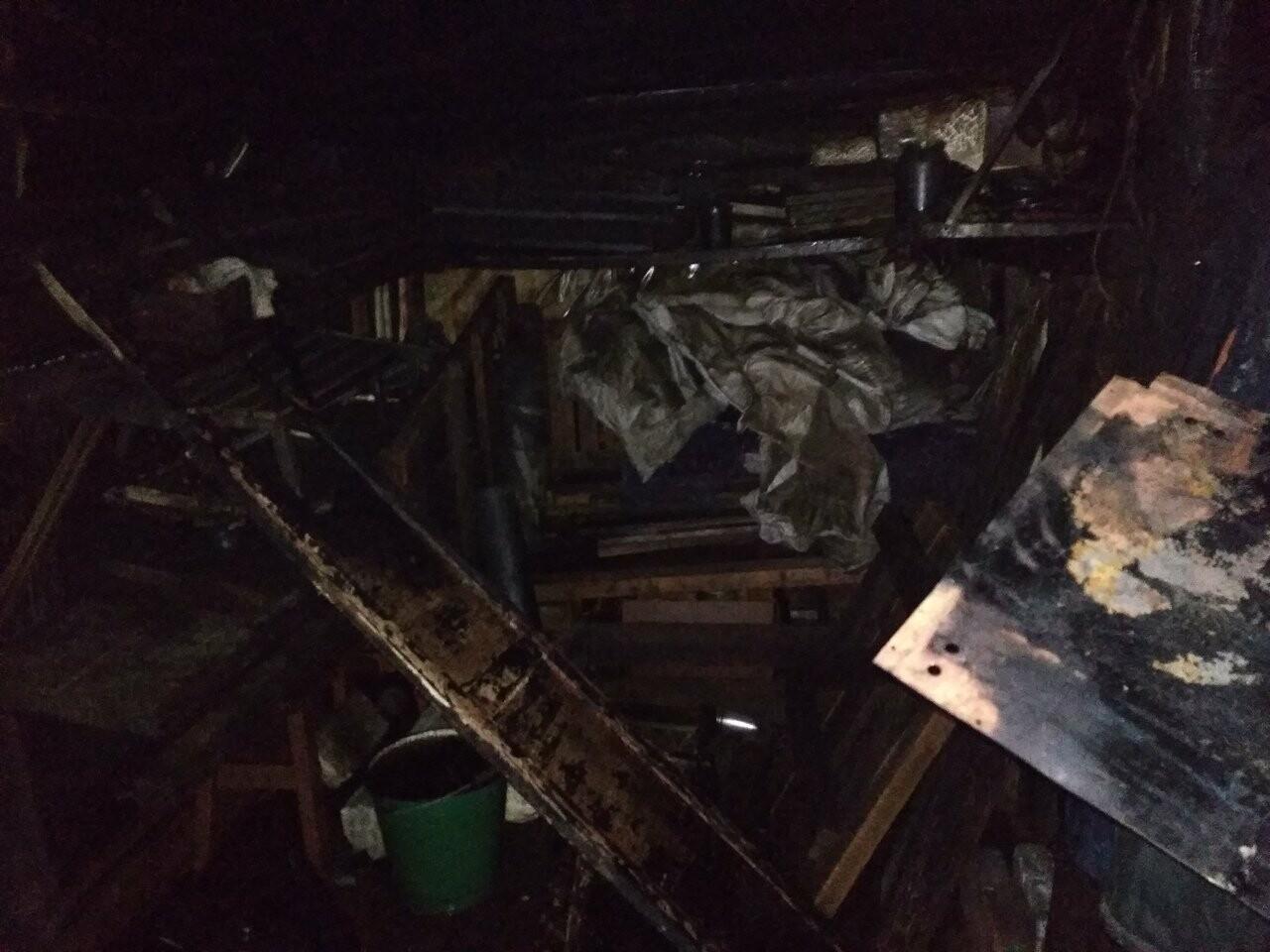 В Тамбове сгорели 16 сараев из-за сжигания тополиного пуха. ВИДЕО, фото-5