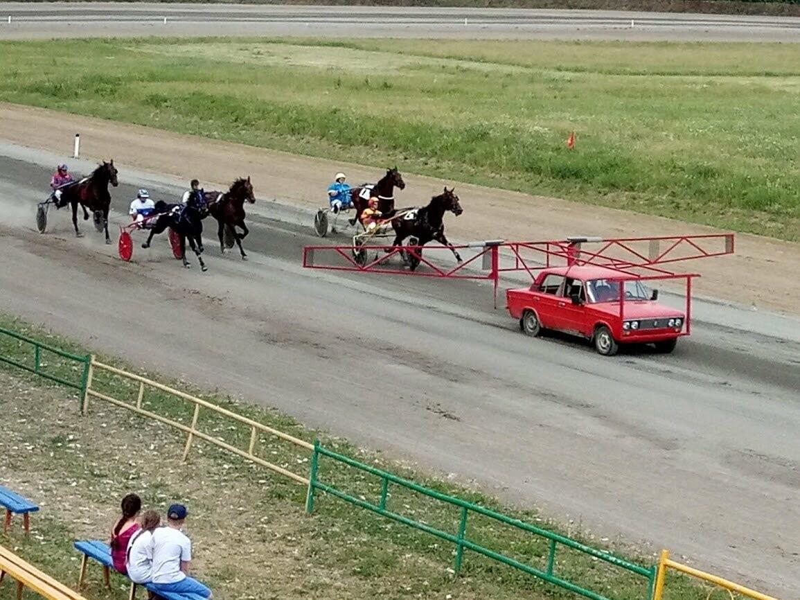 Аллюр три креста: на ипподроме провели скачки на кубок главы администрации Тамбова, фото-4