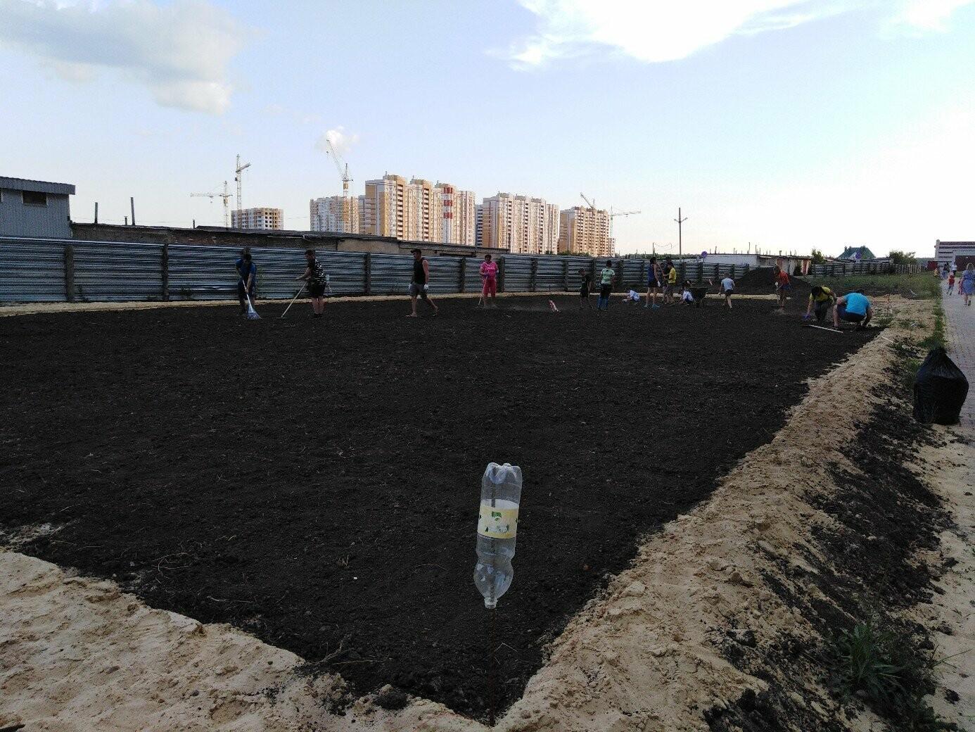 В Тамбове жители улицы Сабуровской обустроили футбольное поле, фото-4