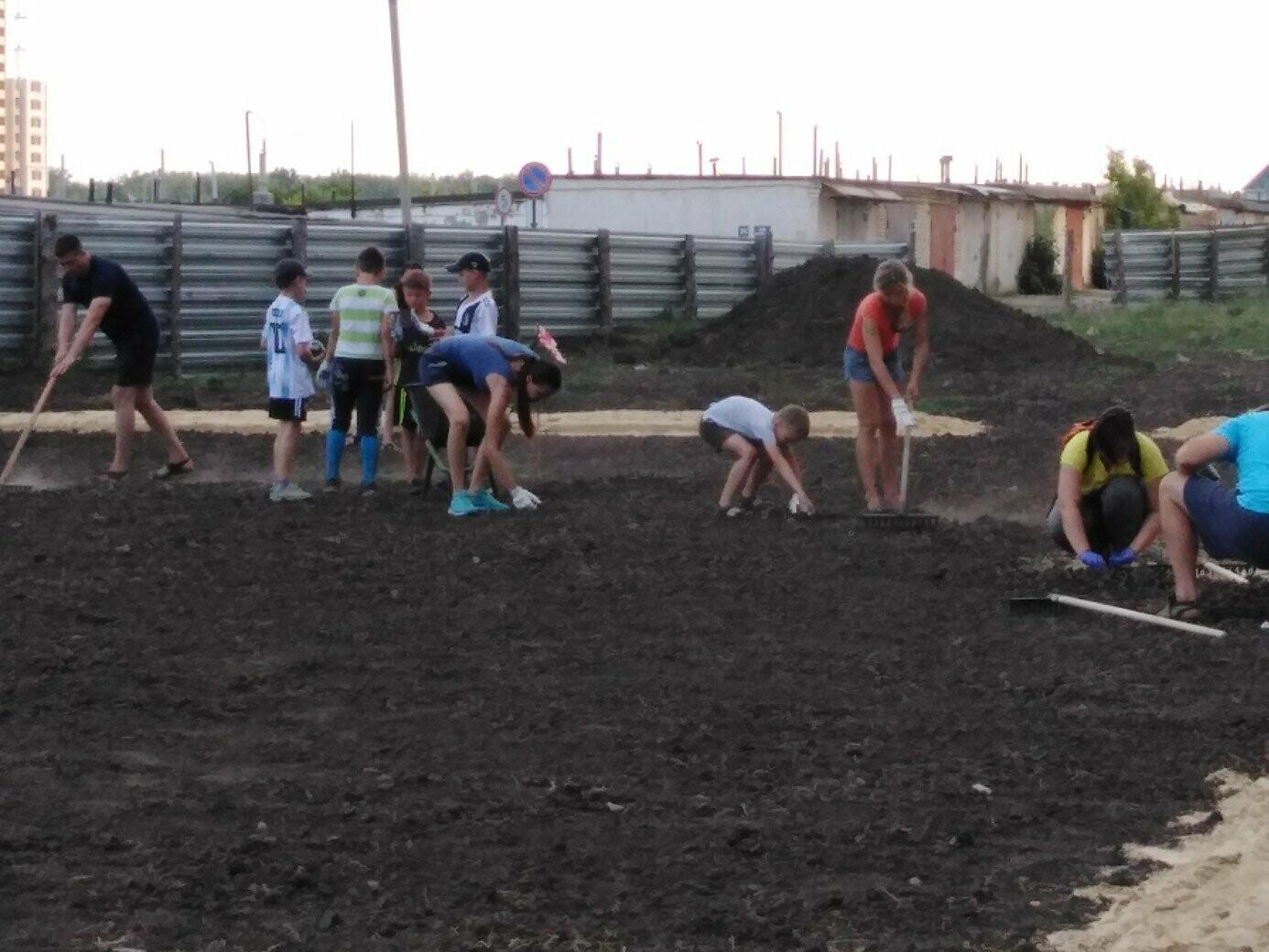 В Тамбове жители улицы Сабуровской обустроили футбольное поле, фото-9