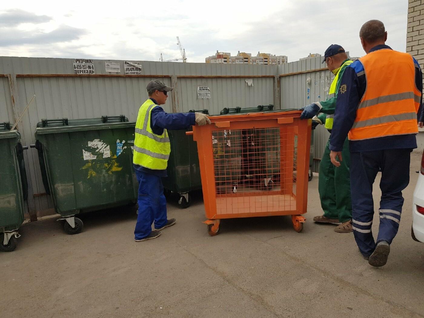 В Тамбове запустили проект по раздельному сбору мусора, фото-1