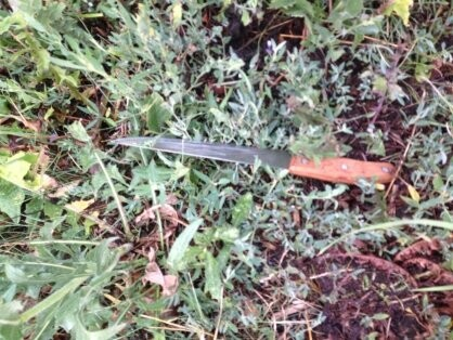 Тамбовчанин зарезал жену и ранил сына-подростка, заступившегося за мать, фото-1
