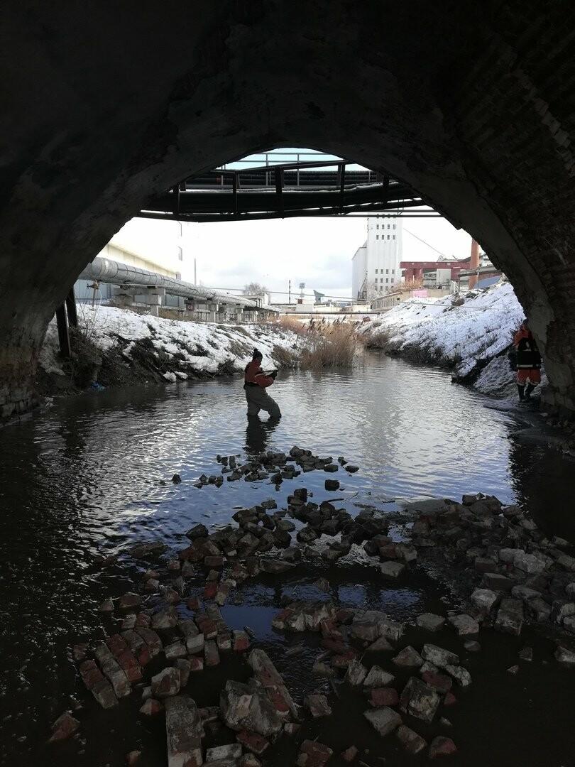 Проект реконструкции моста через Студенец в Тамбове готов к прохождению госэкспертизы, фото-1