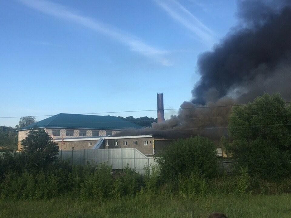 В Мичуринском районе загорелся молокозавод: огонь охватил 3000 кв. м. ВИДЕО, фото-1