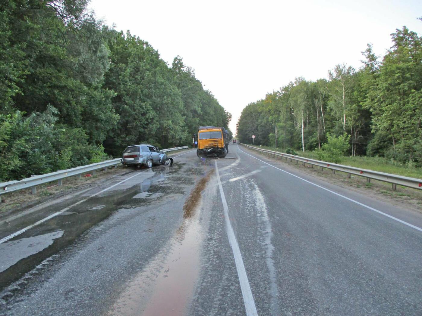На трассе «Тамбов-Шацк» при столкновении «КамАЗа» и легковушки погиб мужчина. ВИДЕО, фото-2