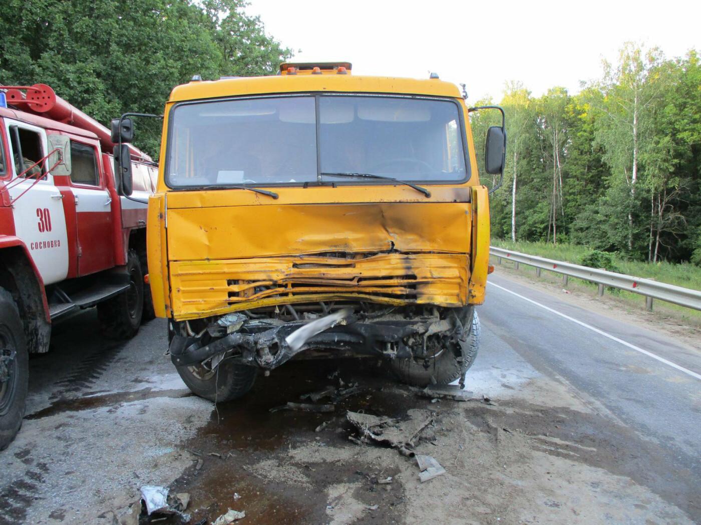 На трассе «Тамбов-Шацк» при столкновении «КамАЗа» и легковушки погиб мужчина. ВИДЕО, фото-1