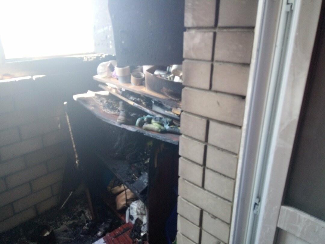 Кошка спасла хозяина от пожара в жилом доме на севере Тамбова, фото-3