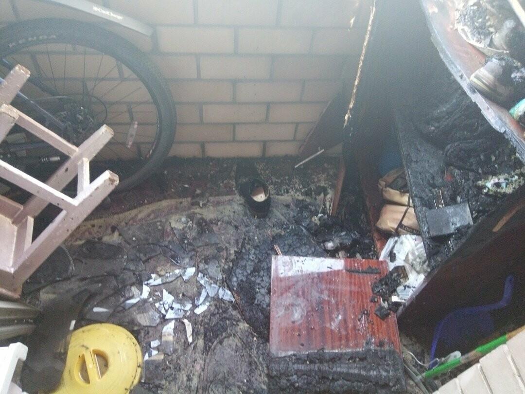 Кошка спасла хозяина от пожара в жилом доме на севере Тамбова, фото-4