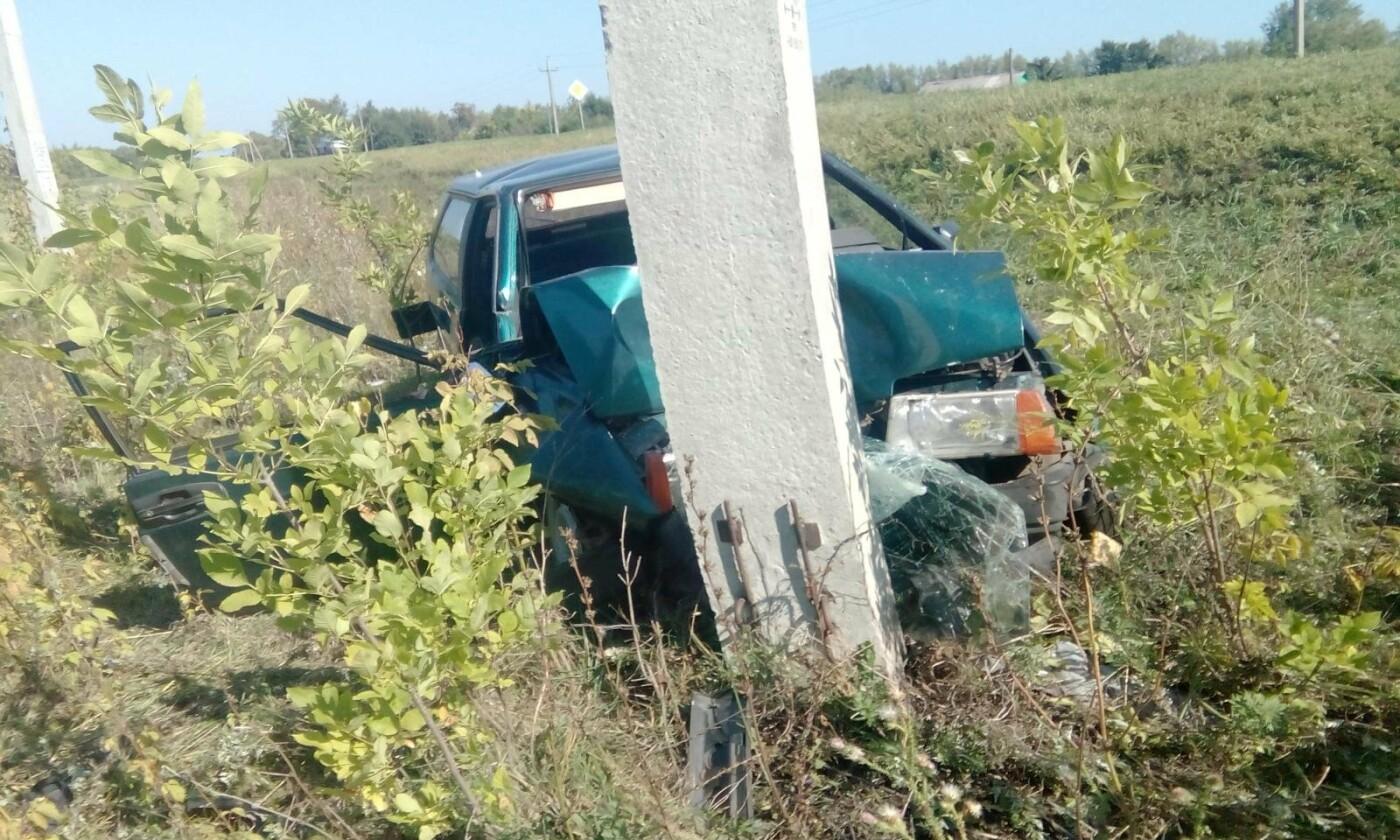 Семья пенсионеров погибла в аварии в Тамбовской области, фото-1