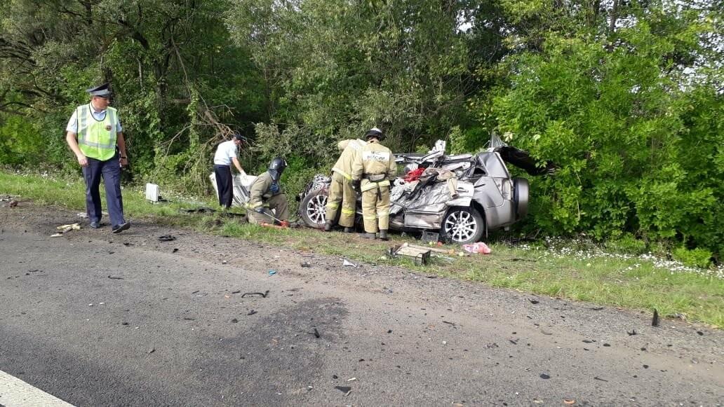 На федеральной дороге в Тамбовской области в столкновении зерновоза и двух «легковушек» погиб человек: видео, фото-6