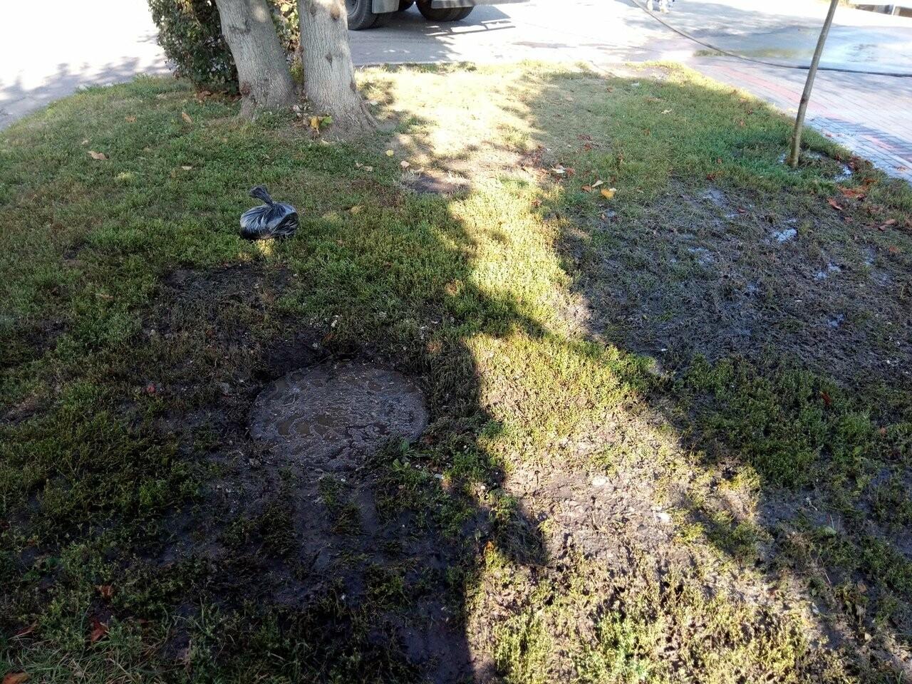 В Тамбове по Набережной текли нечистоты, фото-3