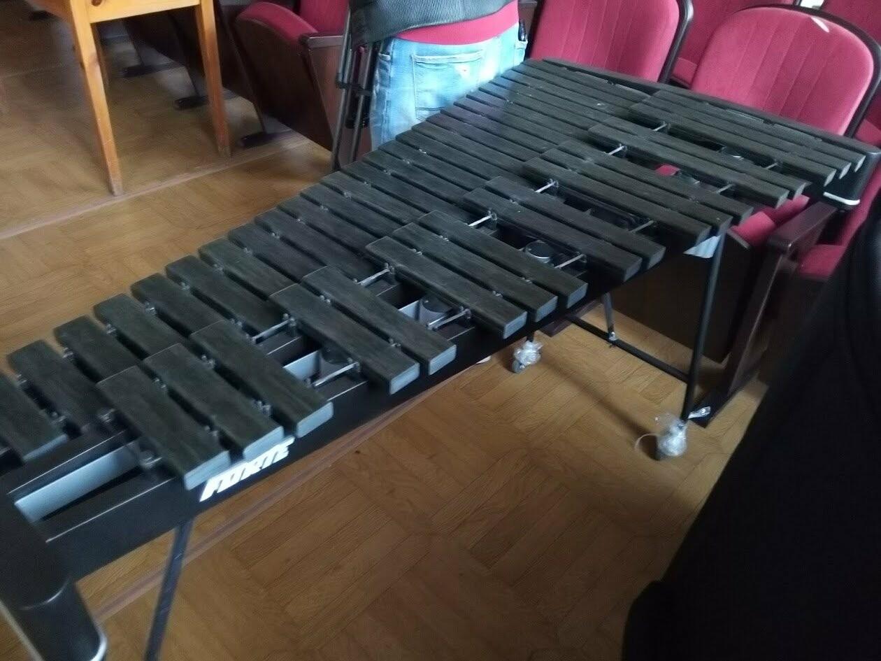 Две тамбовских школы купили музыкальные инструменты на 11 млн рублей, фото-5