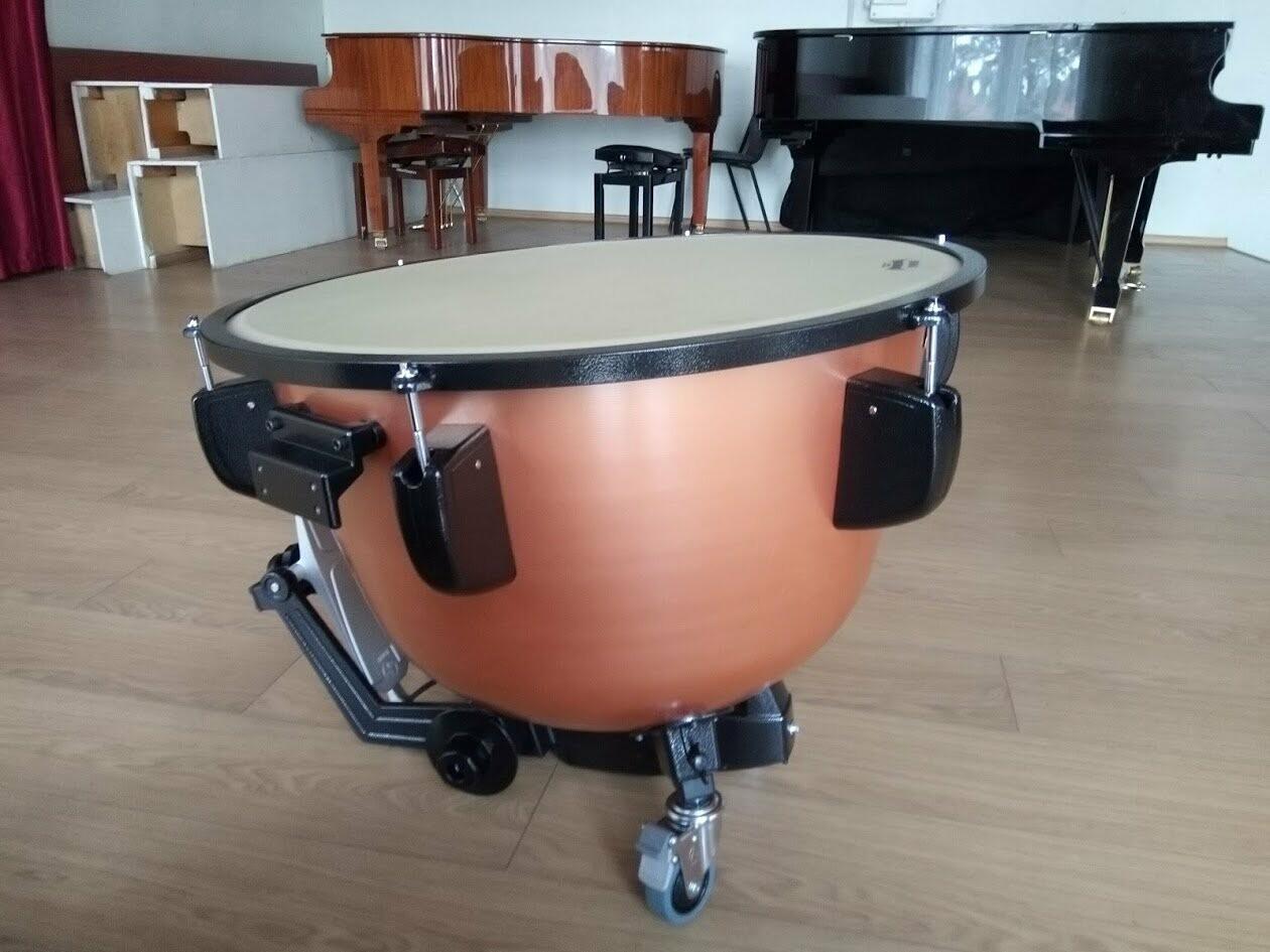 Две тамбовских школы купили музыкальные инструменты на 11 млн рублей, фото-3