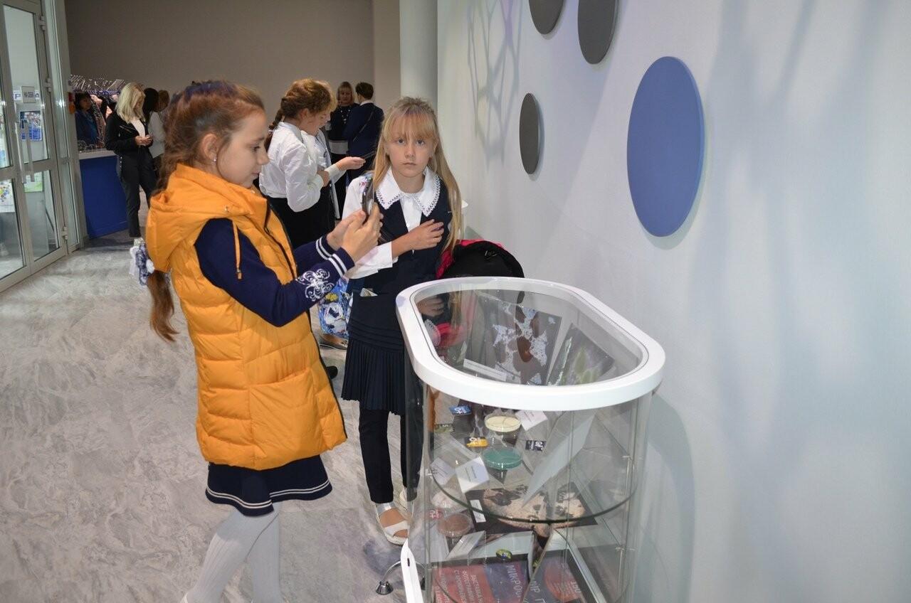 В Тамбове открыли выставку «Мир под микроскопом», фото-3
