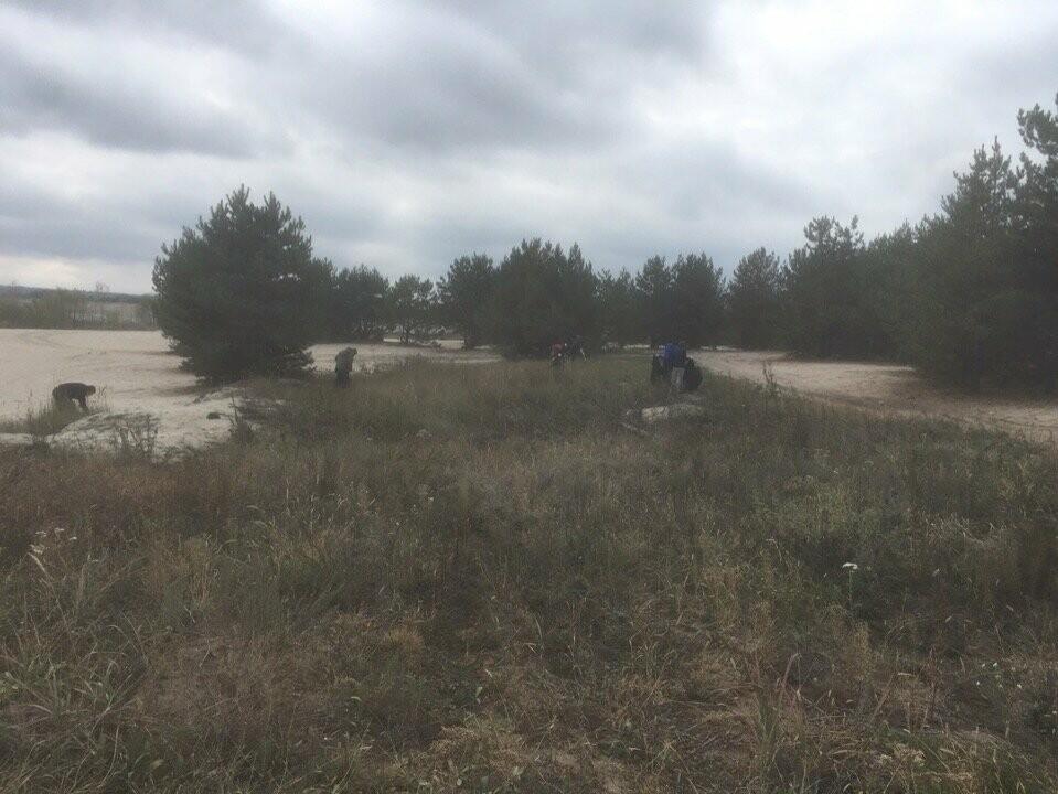 На берегу Котовского водохранилища провели субботник, фото-4
