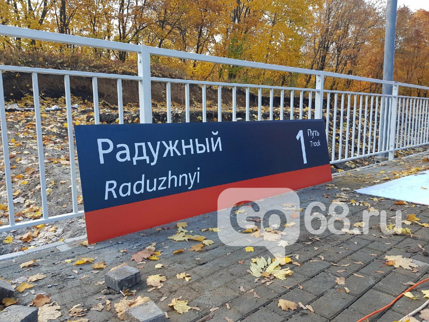 В Тамбове завершают строительство ж/д станции «Радужный», фото-10