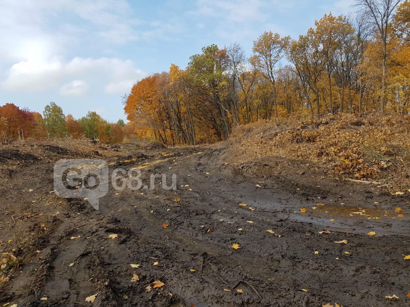 В Тамбове завершают строительство ж/д станции «Радужный», фото-13