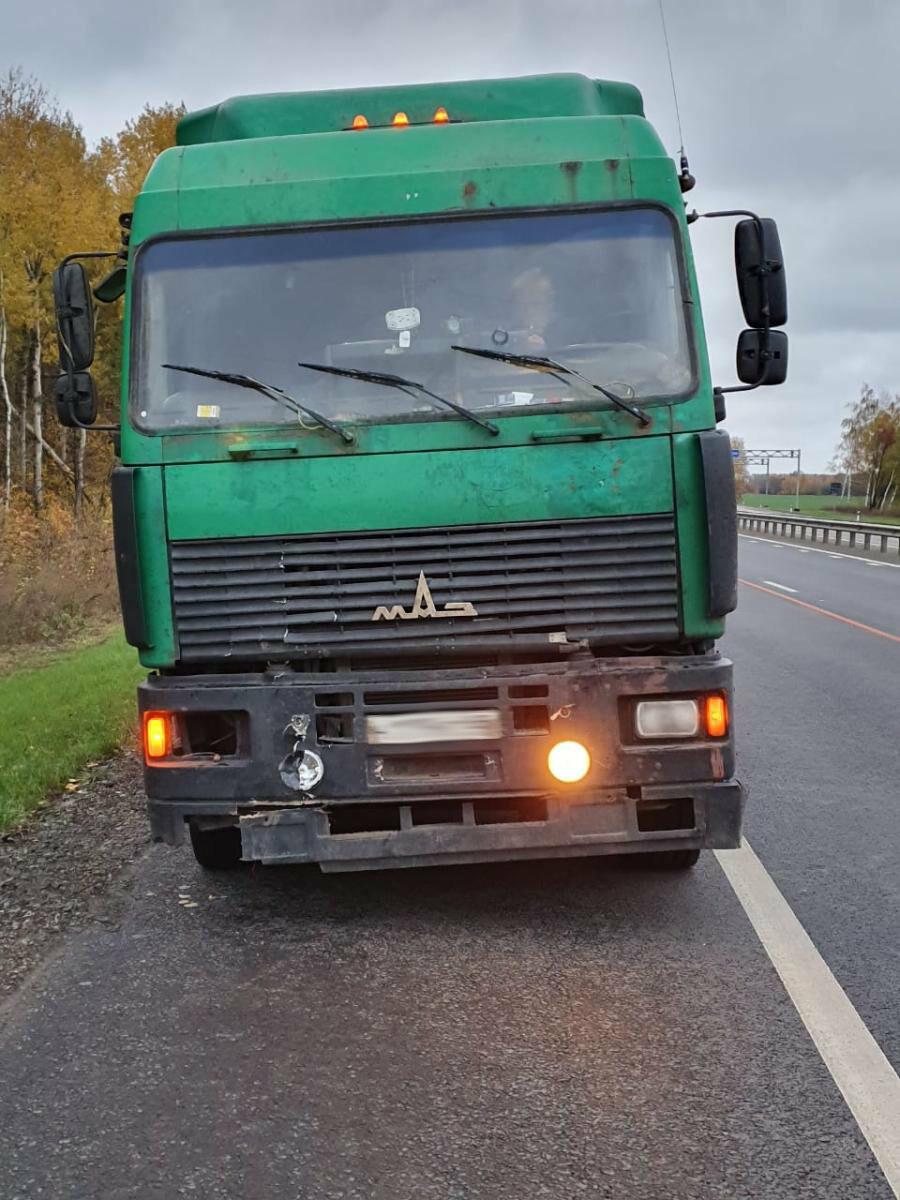 На трассе Р-22 «Каспий» в Тамбовской области фура насмерть сбила мужчину, фото-1