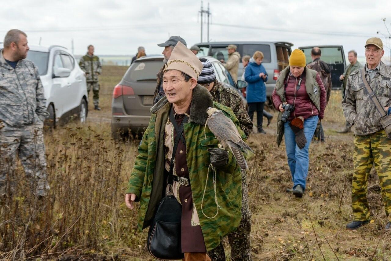 Лучше сокол в небе: мичуринский сокольник занял первое место на Всероссийских соревнованиях, фото-1