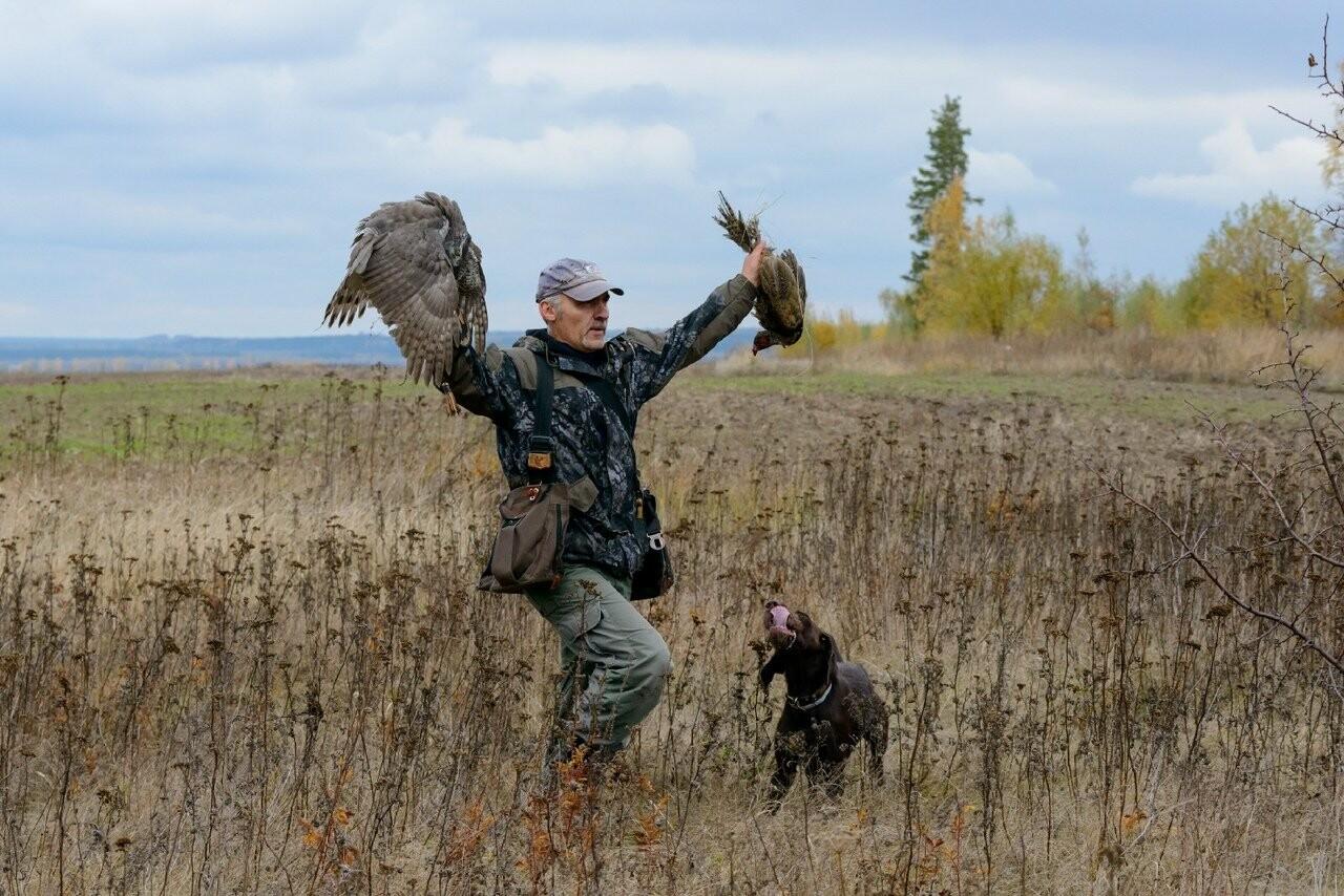 Лучше сокол в небе: мичуринский сокольник занял первое место на Всероссийских соревнованиях, фото-2