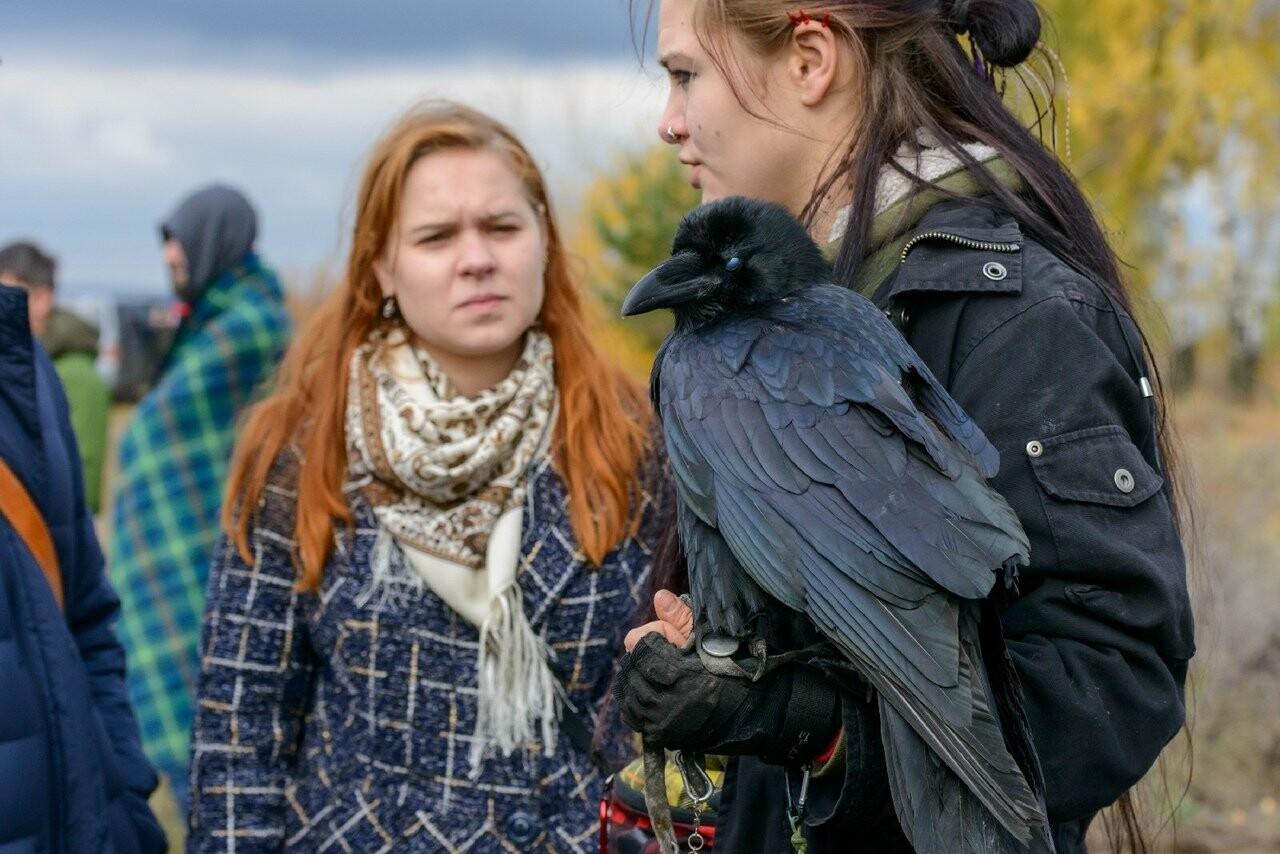 Лучше сокол в небе: мичуринский сокольник занял первое место на Всероссийских соревнованиях, фото-8