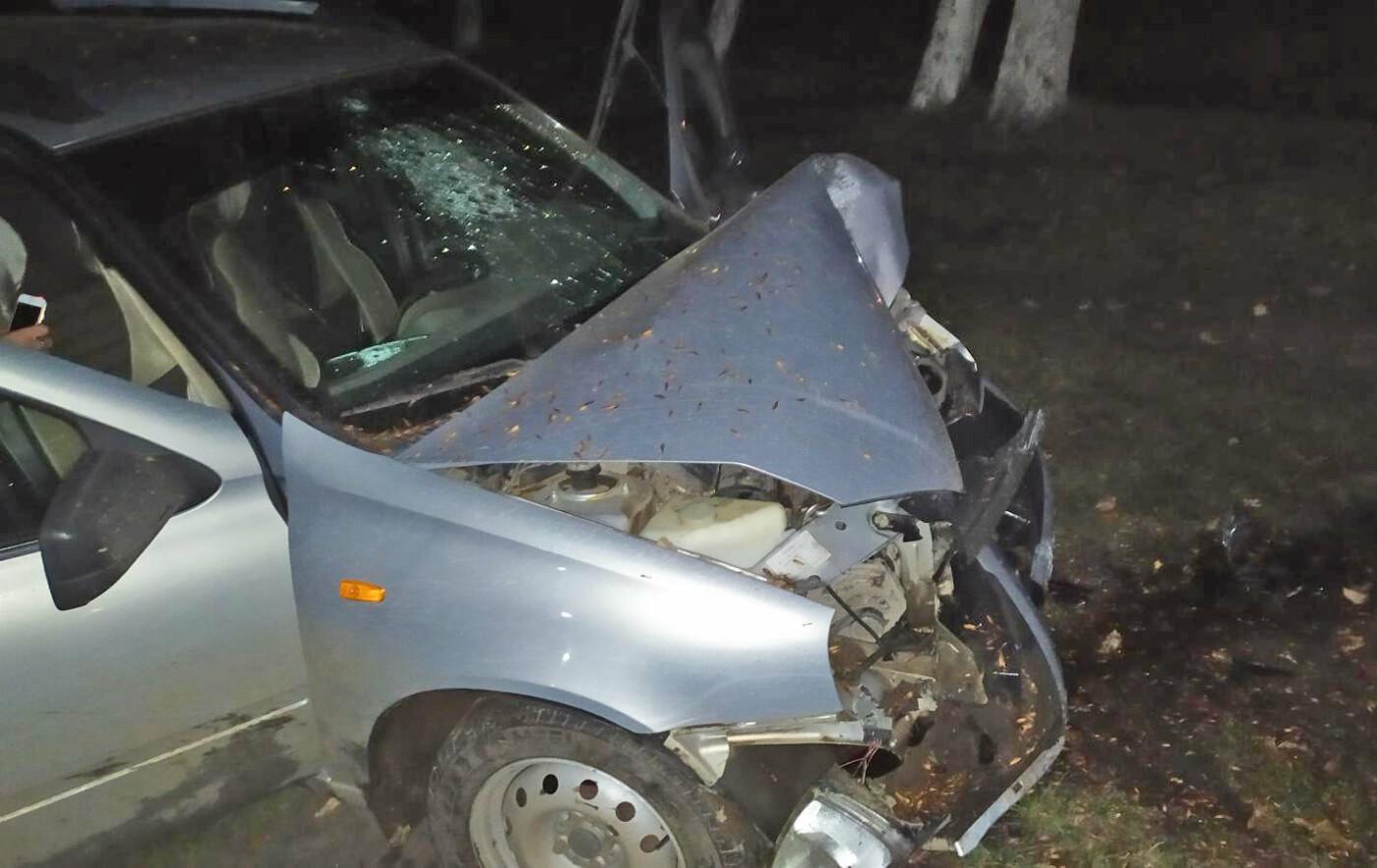 В Мичуринске неопытный водитель врезался в дерево, фото-1