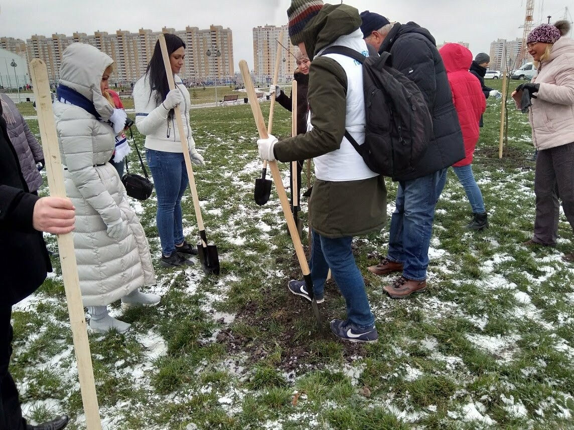 Глава Тамбова вместе со студентами посадила 200 саженцев в Олимпийском парке, фото-2