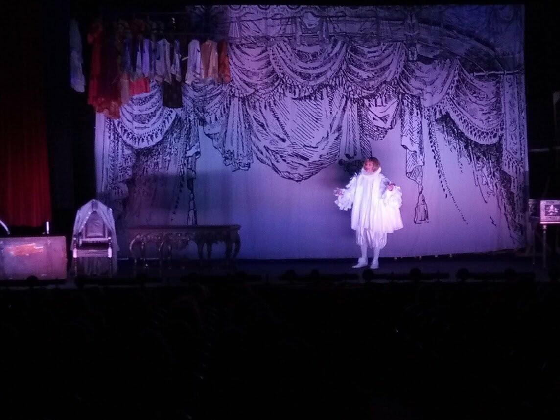 В Мичуринске стартовал фестиваль «На родине Владимира Зельдина», фото-11