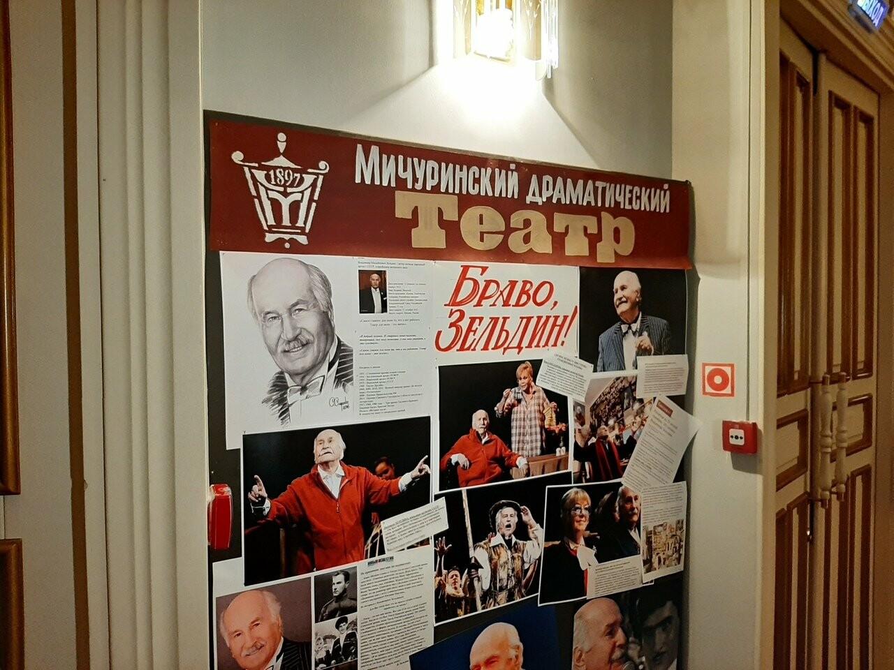 В Мичуринске завершился фестиваль «На родине Владимира Зельдина», фото-3