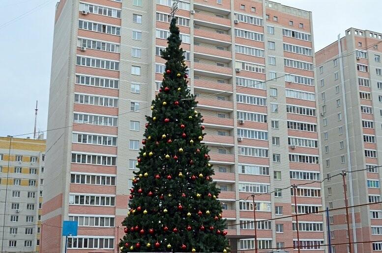 Праздник к нам приходит: в Тамбове установили первую новогоднюю ёлку, фото-1