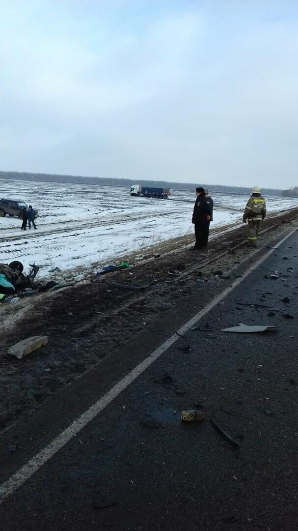 На федеральной дороге Воронеж-Тамбов в Тамбовской области за сутки произошло второе ДТП со смертельным исходом, фото-3