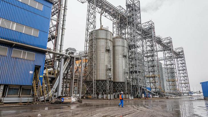 Тамбовский агрохолдинг «Экоойл» запустил вторую очередь по переработке семян подсолнечника, фото-1