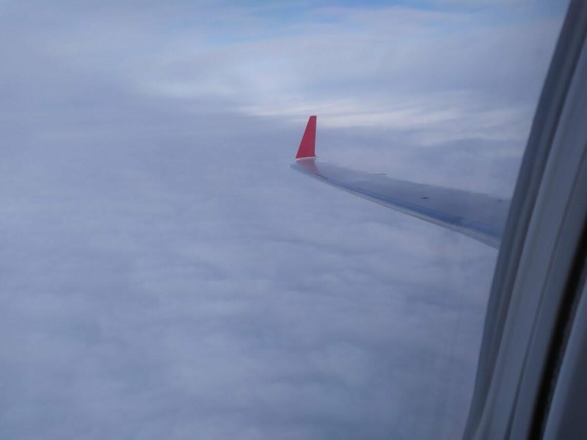 Из Тамбова запустили авиарейсы в Краснодар и Екатеринбург, фото-8