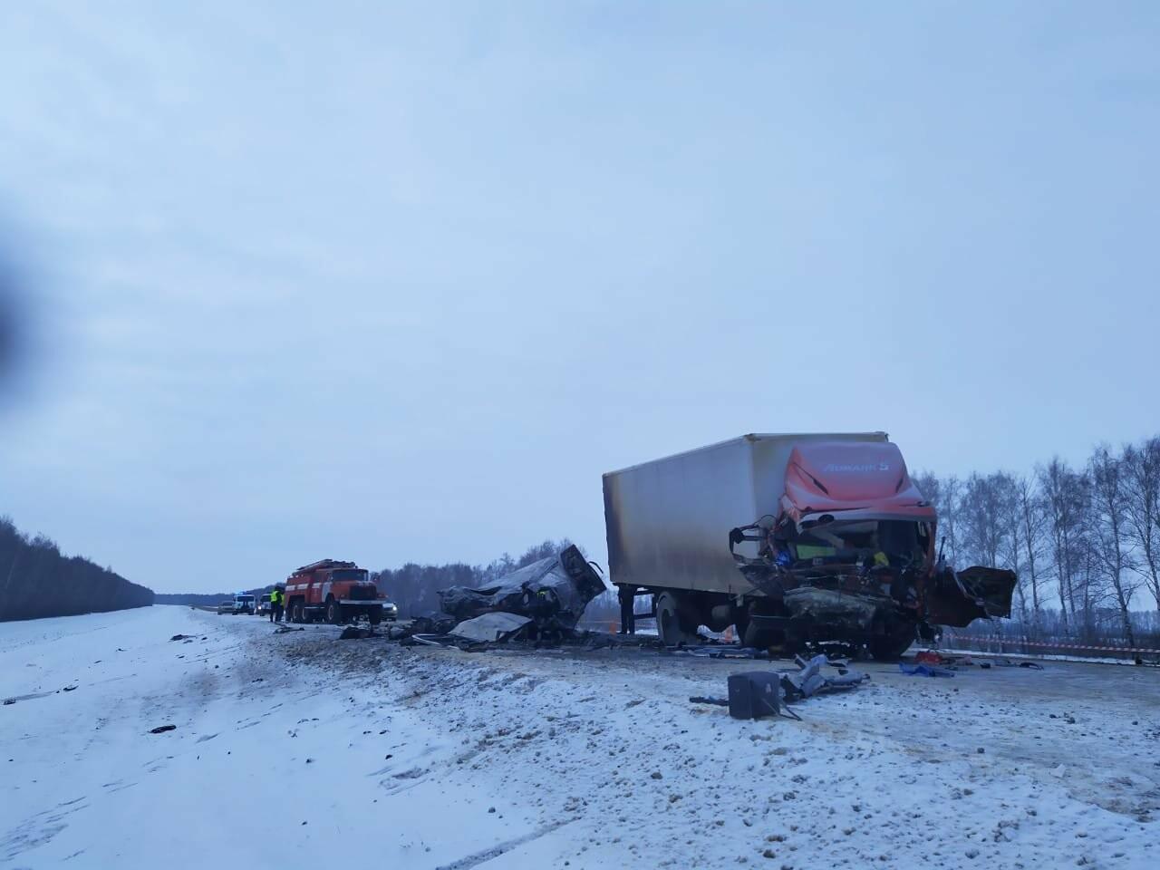 Шесть человек погибли в ДТП на трассе в Тамбовской области: видео, фото-3