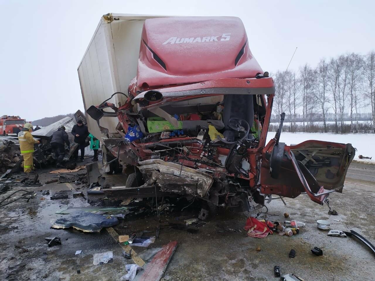 Шесть человек погибли в ДТП на трассе в Тамбовской области: видео, фото-6