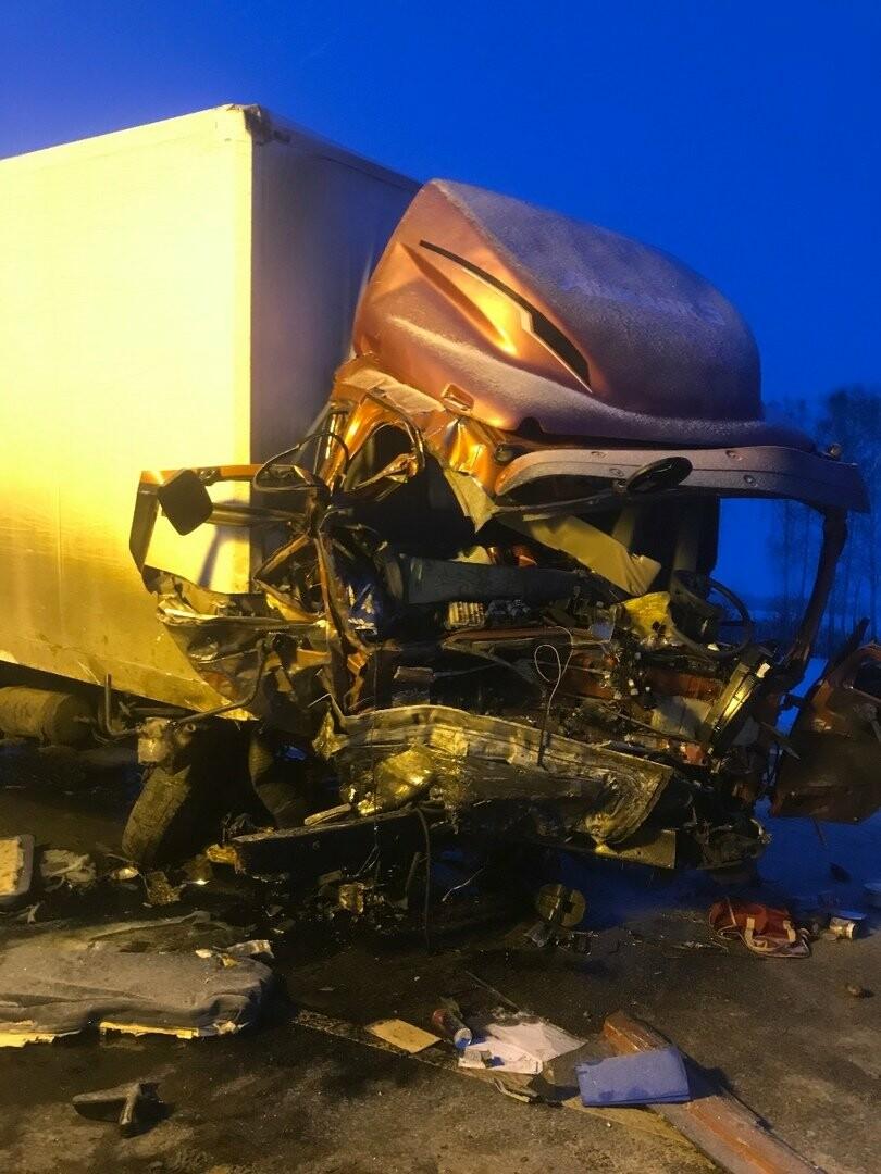 Шесть человек погибли в ДТП на трассе в Тамбовской области: видео, фото-2