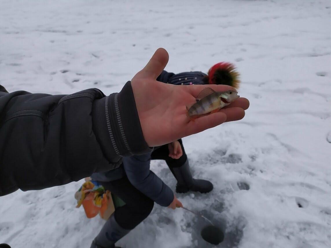 В Тамбове провели детский турнир по зимней рыбалке, фото-8