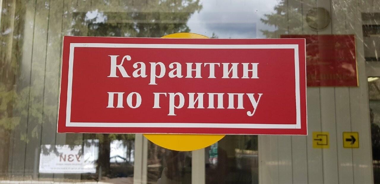 Проверено на себе: карантин по коронавирусу в Тамбове. День 4, фото-2
