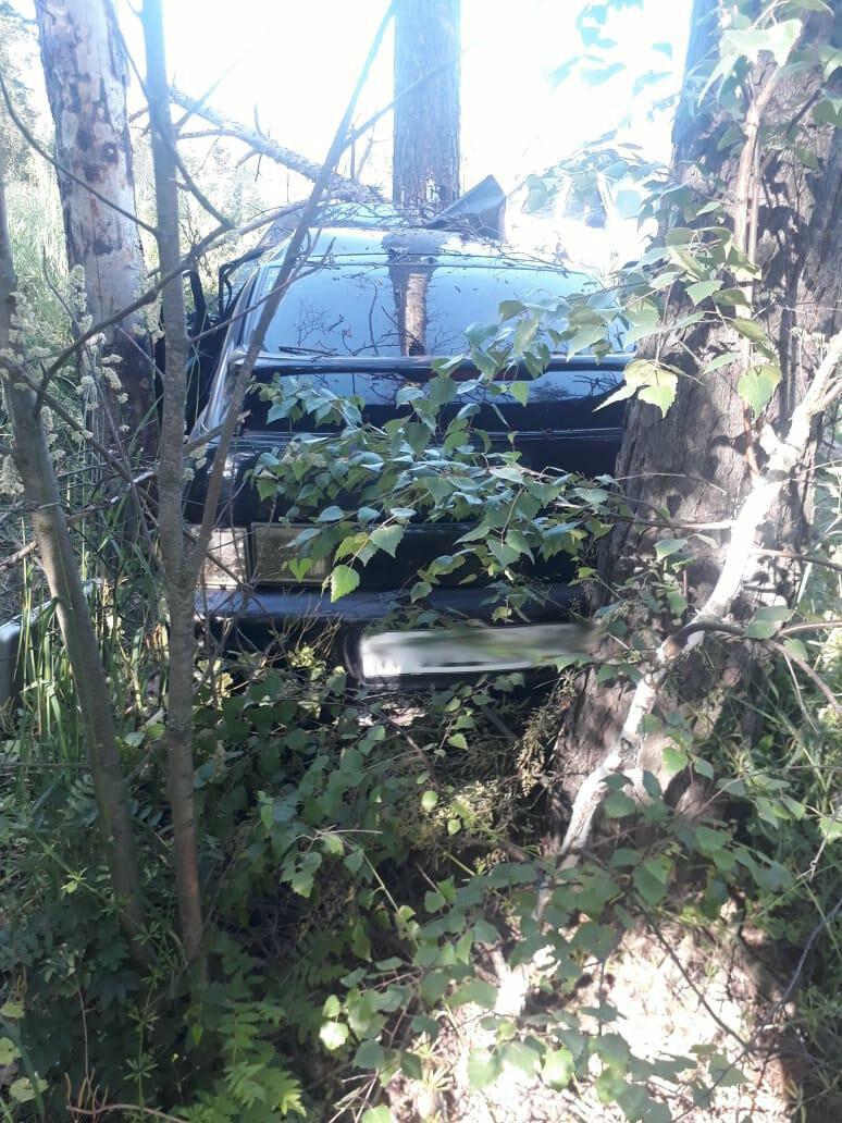 В Знаменском районе подросток за рулем легковушки влетел в дерево, фото-1