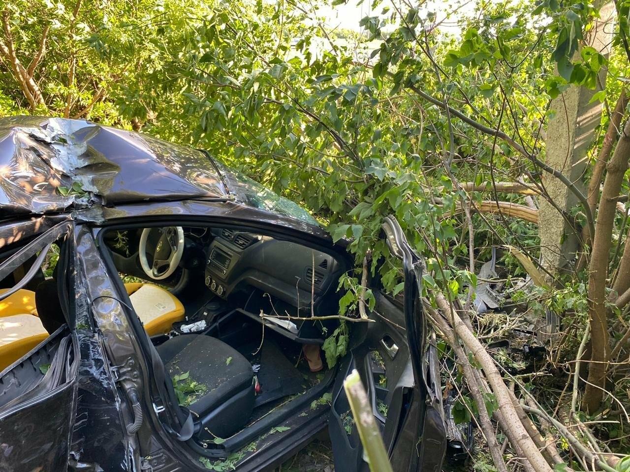В Тамбовской области водитель без прав устроил ДТП с двумя погибшими, фото-1